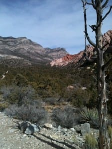Red Rock Canyon, Las Vegas--$7 All Day!