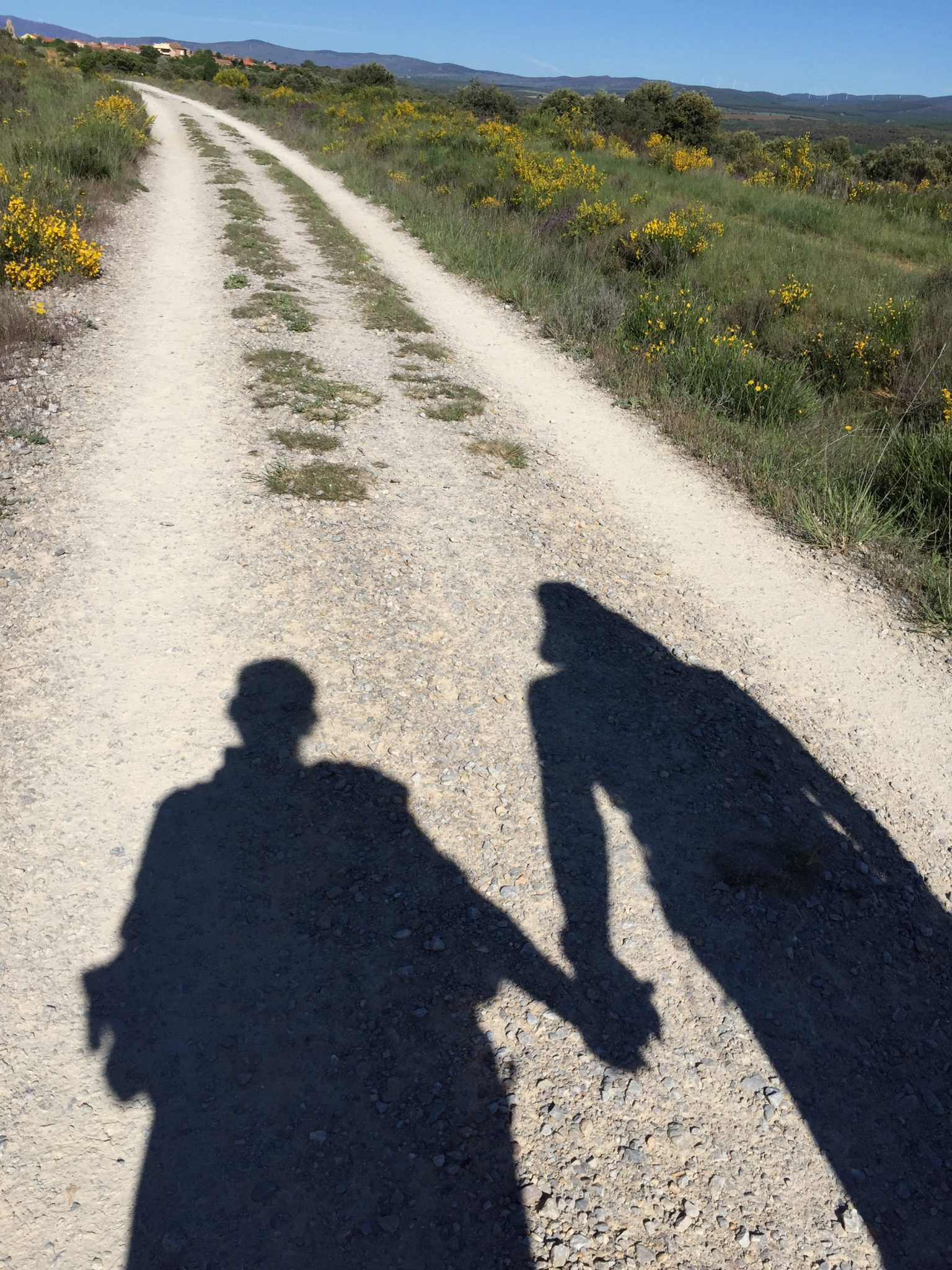 You Should Walk the Camino!