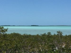 On Our Drive Down the Florida Keys