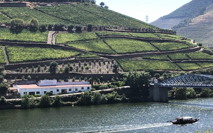 Quinta Das Carvalhas Winery in the Douro Valley